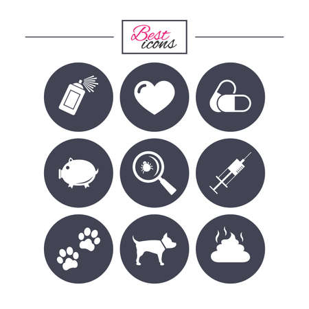 feces: Veterinary, pets icons. Dog paws, syringe and magnifier signs. Pills, heart and feces symbols. Classic simple flat icons. Vector Illustration