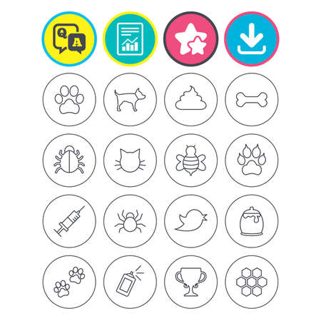 Report, download and star signs. Pets and Insects icons. Dog paw. Cat paw with clutches. Bone, feces excrement and vaccination. Honey, bee and honey comb. Question and answer or Q&A symbol. Vector Illustration
