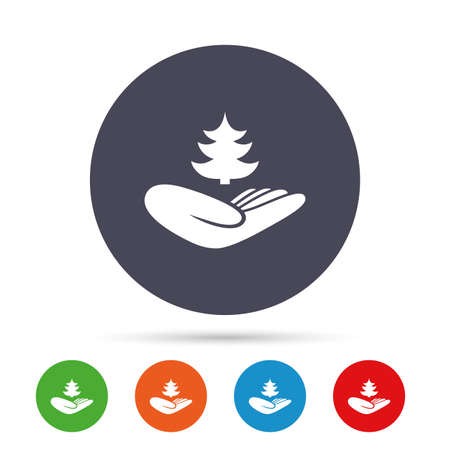 website buttons: Save forest sign icon. Hand holds Christmas tree symbol. Environmental protection symbol. Round colourful buttons with flat icons. Vector