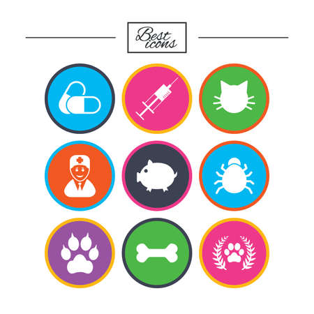 Veterinary, pets icons. Paw, syringe and bone signs. Pills, cat and doctor symbols. Classic simple flat icons. Vector