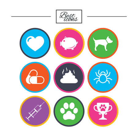 Veterinary, pets icons. Dog paw, syringe and winner cup signs. Pills, heart and feces symbols. Classic simple flat icons. Vector