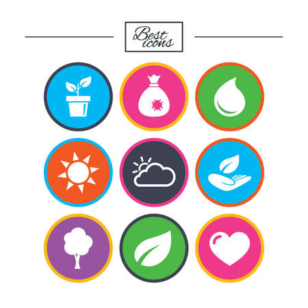 Garden sprout, leaf icons. Nature and weather signs. Sun, cloud and tree symbols. Classic simple flat icons. Vector