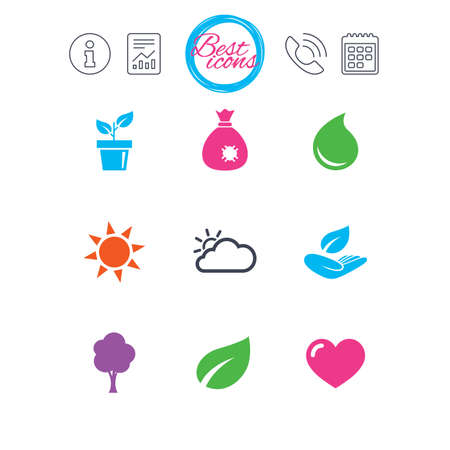 Information, report and calendar signs. Garden sprout, leaf icons. Nature and weather signs. Sun, cloud and tree symbols. Classic simple flat web icons. Vector
