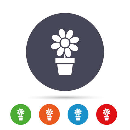 macro flowers: Flowers in pot icon. Bouquet of flowers with petals. Macro sign. Round colourful buttons with flat icons. Vector Illustration