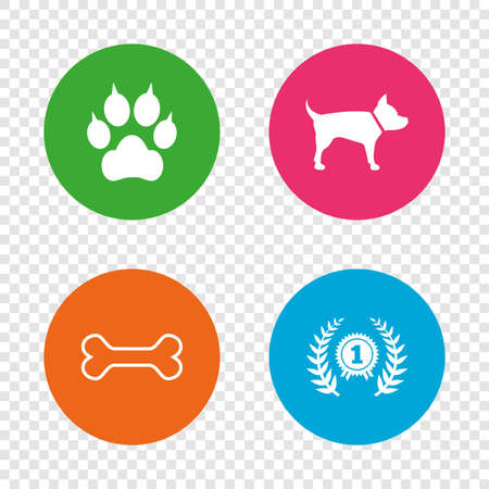 Pets icons. Cat paw with clutches sign. Winner laurel wreath and medal symbol. Pets food. Round buttons on transparent background. Vector