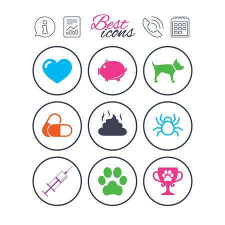 Information, report and calendar signs. Veterinary, pets icons. Dog paw, syringe and winner cup signs. Pills, heart and feces symbols. Phone call symbol. Classic simple flat web icons. Vector