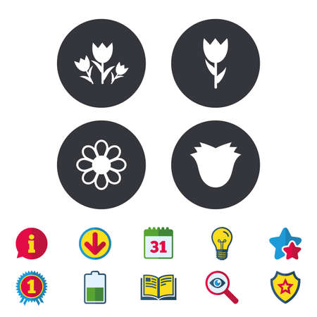 Flowers icons. Bouquet of roses symbol. Flower with petals and leaves. Calendar, Information and Download signs. Stars, Award and Book icons. Light bulb, Shield and Search. Vector