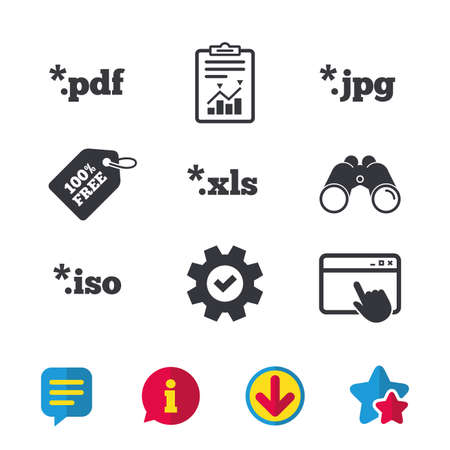 Document icons. File extensions symbols. PDF, XLS, JPG and ISO virtual drive signs. Browser window, Report and Service signs. Binoculars, Information and Download icons. Stars and Chat. Vector
