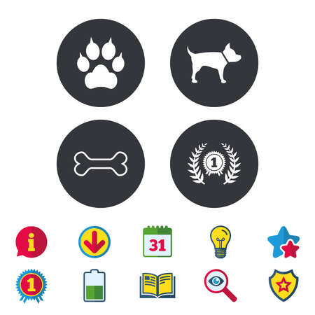 Pets icons. Cat paw with clutches sign. Winner laurel wreath and medal symbol. Pets food. Calendar, Information and Download signs. Stars, Award and Book icons. Light bulb, Shield and Search. Vector