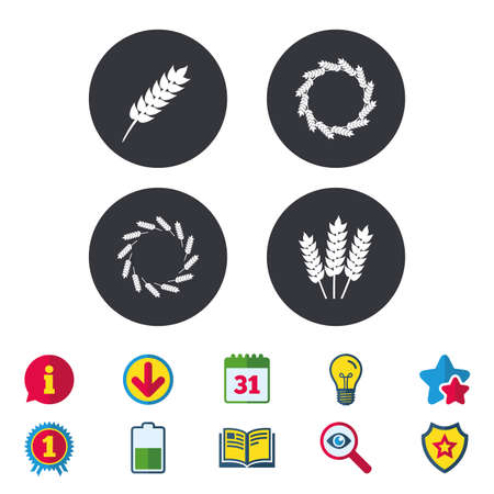 Agricultural icons. Gluten free or No gluten signs. Wreath of Wheat corn symbol. Calendar, Information and Download signs. Stars, Award and Book icons. Light bulb, Shield and Search. Vector