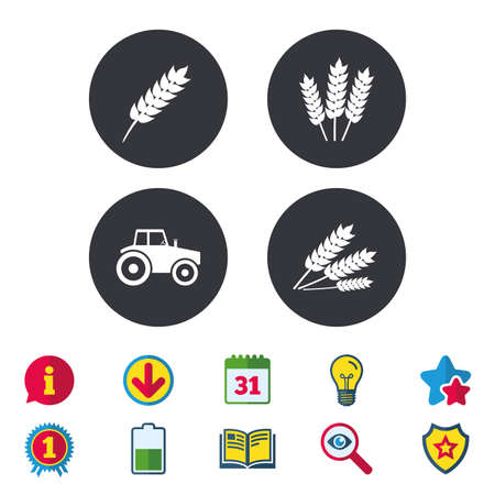 Landwirtschaftliche Symbole. Weizen Mais oder Gluten freie Zeichen Symbole. Traktor Maschinen. Kalender, Information und Download-Zeichen. Sterne, Auszeichnung und Buch Symbole. Glühbirne, Schild und Suche. Vektor Standard-Bild - 84854329