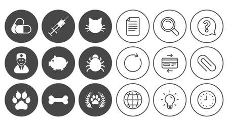 Veterinary, pets icons. Paw, syringe and bone signs. Pills, cat and doctor symbols. Document, Globe and Clock line signs. Lamp, Magnifier and Paper clip icons. Question, Credit card and Refresh