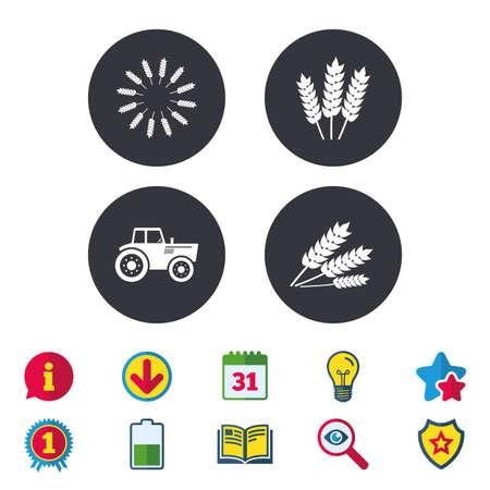 Landwirtschaftliche Symbole. Weizen Mais oder Gluten freie Zeichen Symbole. Traktor Maschinen. Kalender, Information und Download-Zeichen. Sterne, Auszeichnung und Buch Symbole. Glühbirne, Schild und Suche. Vektor Standard-Bild - 84854330