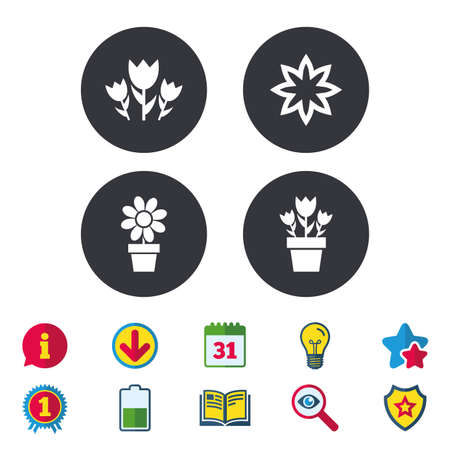 Flowers icons. Bouquet of roses symbol. Flower with petals and leaves in a pot. Calendar, Information and Download signs. Stars, Award and Book icons. Light bulb, Shield and Search. Vector