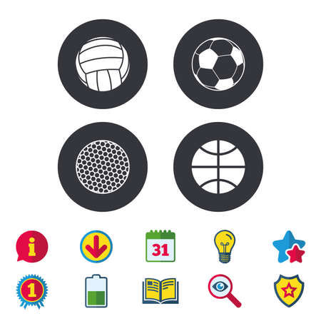 Sport balls icons. Volleyball, Basketball, Soccer and Golf signs. Team sport games. Calendar, Information and Download signs. Stars, Award and Book icons. Light bulb, Shield and Search. Vector