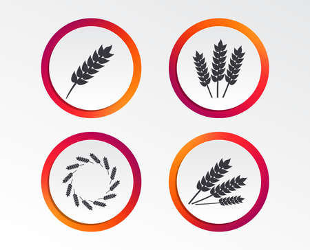 Agricultural icons. Gluten free or No gluten signs. Wreath of Wheat corn symbol. Infographic design buttons. Circle templates. Vector Ilustração