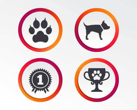 Pet icons. Infographic design buttons. Circle templates. Vector