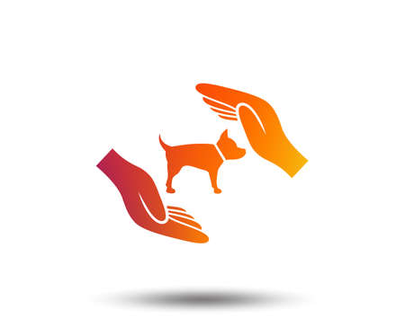 Protection of animals pets sign icon. Hands protect dog symbol. Shelter for dogs. Animals insurance. Blurred gradient design element. Vivid graphic flat icon.