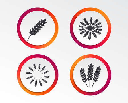 Agricultural icons. Gluten free or No gluten signs. Wreath of Wheat corn symbol. Infographic design buttons. Circle templates. Ilustração