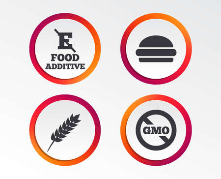 Food additive icon. Hamburger fast food sign. Gluten free and No GMO symbols. Without E acid stabilizers. Infographic design buttons. Circle templates. Vector