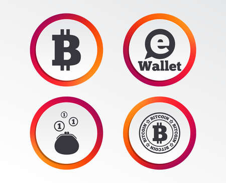 Bitcoin icons. Electronic wallet sign. Cash money symbol. Infographic design buttons. Circle templates. Vector Illustration