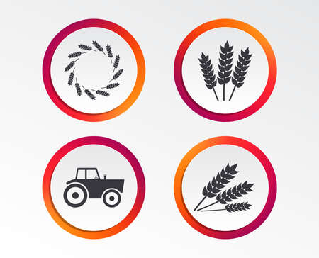 Agricultural icons. Wheat corn or Gluten free signs symbols. Tractor machinery. Infographic design buttons. Circle templates. Vector Standard-Bild - 102085156
