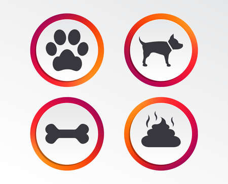 Pets icons. Dog paw and feces signs. Clean up after pets. Pets food. Infographic design buttons. Circle templates. Vector