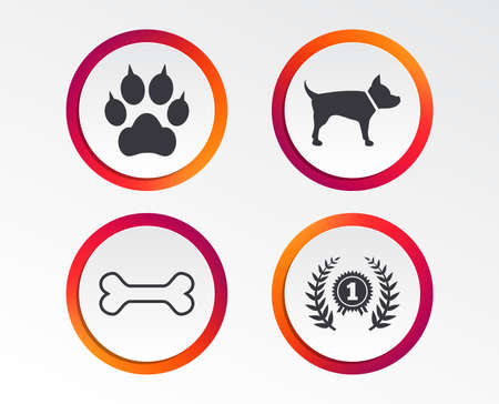 Pets icons. Cat paw with clutches sign. Winner laurel wreath and medal symbol. Pets food. Infographic design buttons. Circle templates. Vector