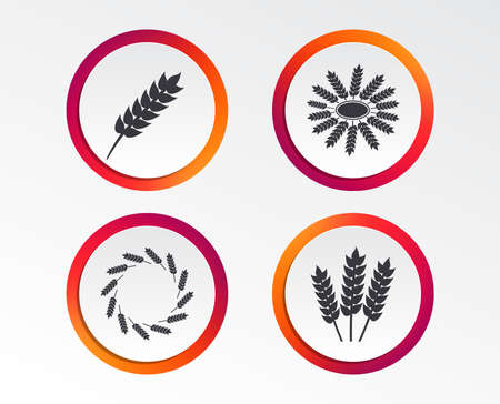 Agricultural icons. Gluten free or No gluten signs. Wreath of Wheat corn symbol. Infographic design buttons. Circle templates. Vector Illustration