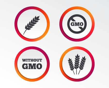 Agricultural icons. Gluten free or No gluten signs. Without Genetically modified food symbols. Infographic design buttons. Circle templates. Vector Ilustrace