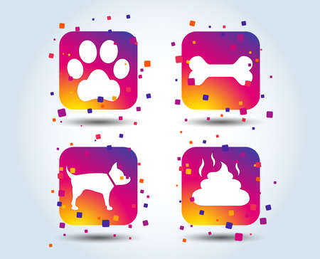 Pets icons. Dog paw and feces signs. Clean up after pets. Pets food. Colour gradient square buttons. Flat design concept. Vector Illustration