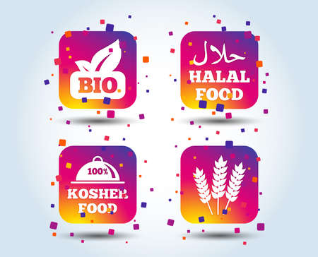 Natural Bio food icons. Halal and 100% Kosher signs. Gluten free agricultural symbol. Colour gradient square buttons. Flat design concept. Vector  イラスト・ベクター素材