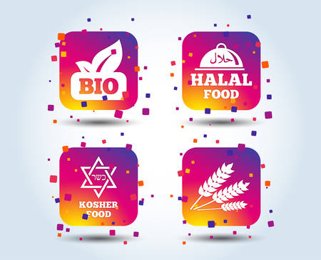 Natural Bio food icons. Halal and Kosher signs. Gluten free and star of David symbols. Colour gradient square buttons. Flat design concept. Vector Illustration