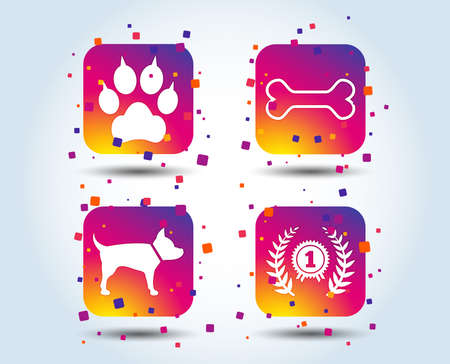 Pets icons. Cat paw with clutches sign. Winner laurel wreath and medal symbol. Pets food. Colour gradient square buttons. Flat design concept. Vector