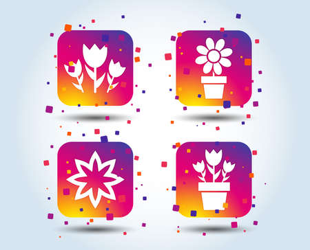 Flowers icons. Bouquet of roses symbol. Flower with petals and leaves in a pot. Colour gradient square buttons. Flat design concept. Vector