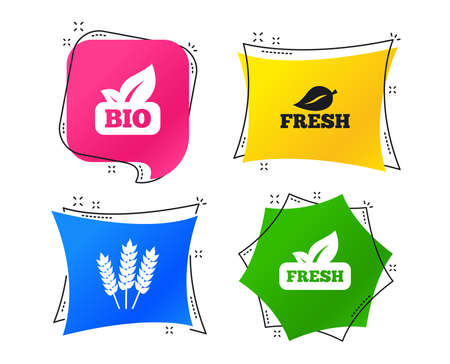 Natural fresh Bio food icons. Gluten free agricultural sign symbol. Geometric colorful tags. Banners with flat icons. Trendy design. Vector Illustration