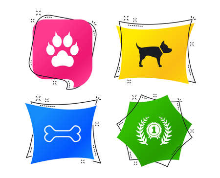Pets icons. Cat paw with clutches sign. Winner laurel wreath and medal symbol. Pets food. Geometric colorful tags. Banners with flat icons. Trendy design. Cat paw vector