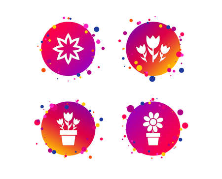 Flowers icons. Bouquet of roses symbol. Flower with petals and leaves in a pot. Gradient circle buttons with icons. Random dots design. Vector Ilustracja