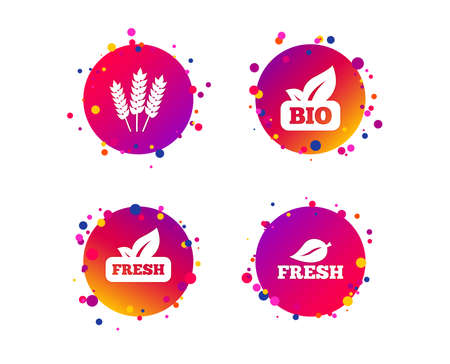 Natural fresh Bio food icons. Gluten free agricultural sign symbol. Gradient circle buttons with icons. Random dots design. Vector Illustration