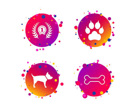 Pets icons. Cat paw with clutches sign. Winner laurel wreath and medal symbol. Pets food. Gradient circle buttons with icons. Random dots design. Vector