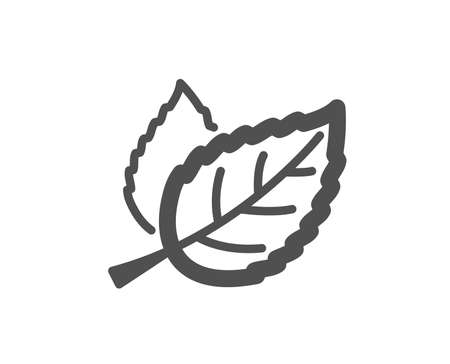 Leaves icon. Nature plant leaf sign. Environmental care symbol. Quality design element. Classic style icon. Vector Illustration