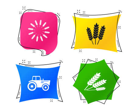 Agricultural icons. Wheat corn or Gluten free signs symbols. Tractor machinery. Geometric colorful tags. Banners with flat icons. Trendy design. Vector Çizim