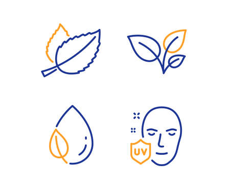 Leaves, Leaf dew and Mint leaves icons simple set. Uv protection sign. Grow plant, Water drop, Mentha herbal. Ultraviolet. Healthcare set. Linear leaves icon. Colorful design set. Vector
