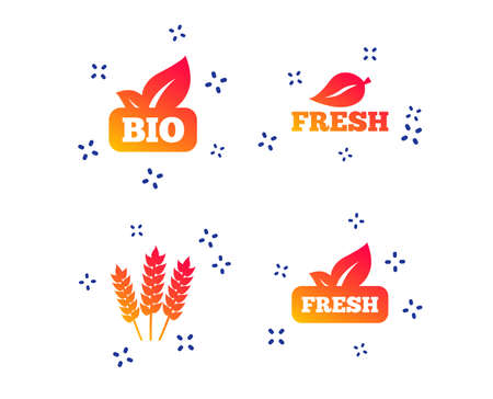 Natural fresh Bio food icons. Gluten free agricultural sign symbol. Random dynamic shapes. Gradient bio icon. Vector
