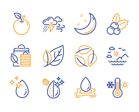 Leaf, Bad weather and Bio shopping icons simple set. Sea mountains, Christmas holly and Water drop signs. Apple, Water splash and Moon stars symbols. Leaves, Thermometer. Ecology, Clouds. Vector