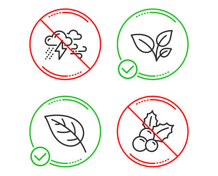 Do or Stop. Leaves, Leaf and Bad weather icons simple set. Christmas holly sign. Grow plant, Environmental, Clouds. Ilex aquifolium. Nature set. Line leaves do icon. Prohibited ban stop. Good or bad