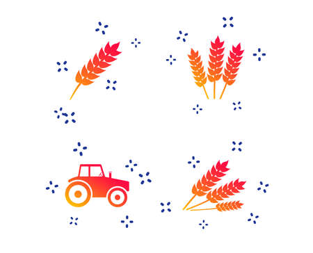 Agricultural icons. Wheat corn or Gluten free signs symbols. Tractor machinery. Random dynamic shapes. Gradient agriculture icon. Vector Standard-Bild - 124075842