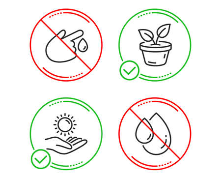 Do or Stop. Leaves, Sun protection and Blood donation icons simple set. Oil drop sign. Grow plant, Ultraviolet care, Injury. Serum. Healthcare set. Line leaves do icon. Prohibited ban stop. Vector