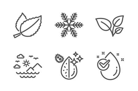 Mint leaves, Leaves and Snowflake icons simple set. Sea mountains, Dirty water and Water drop signs. Mentha herbal, Grow plant. Nature set. Line mint leaves icon. Editable stroke. Vector