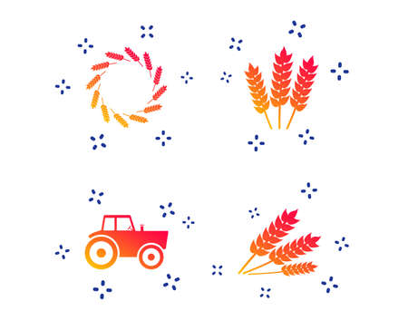Agricultural icons. Wheat corn or Gluten free signs symbols. Tractor machinery. Random dynamic shapes. Gradient agriculture icon. Vector Standard-Bild - 122776644